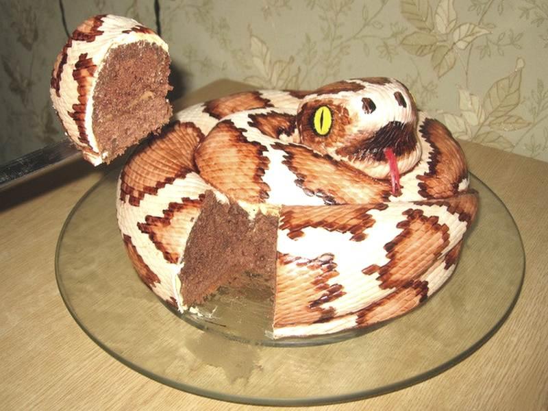 домашних торт в виде змеи фото инстаграма