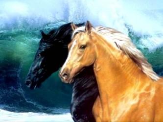 Секс в стойле у лошади